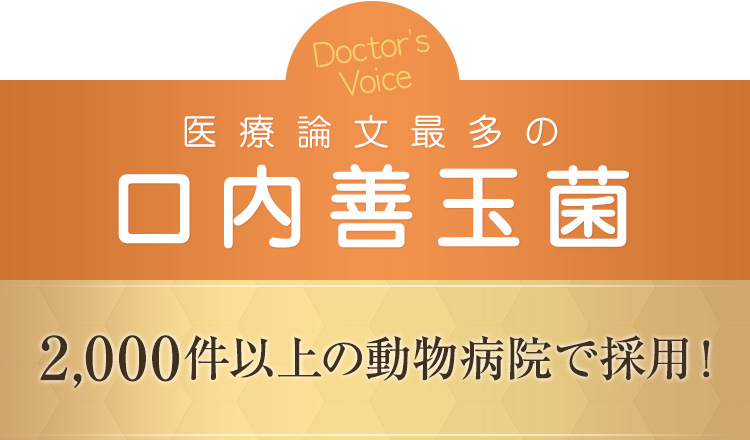 Doctors Voice 医療論文最多の口内善玉菌 2000件以上の動物病院で採用!