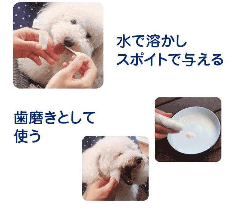 水で溶かしスポイトで与える 歯磨きとして使う